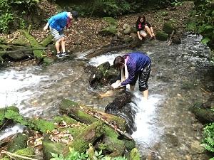 フィールドで学ぶ環境科学3.JPG